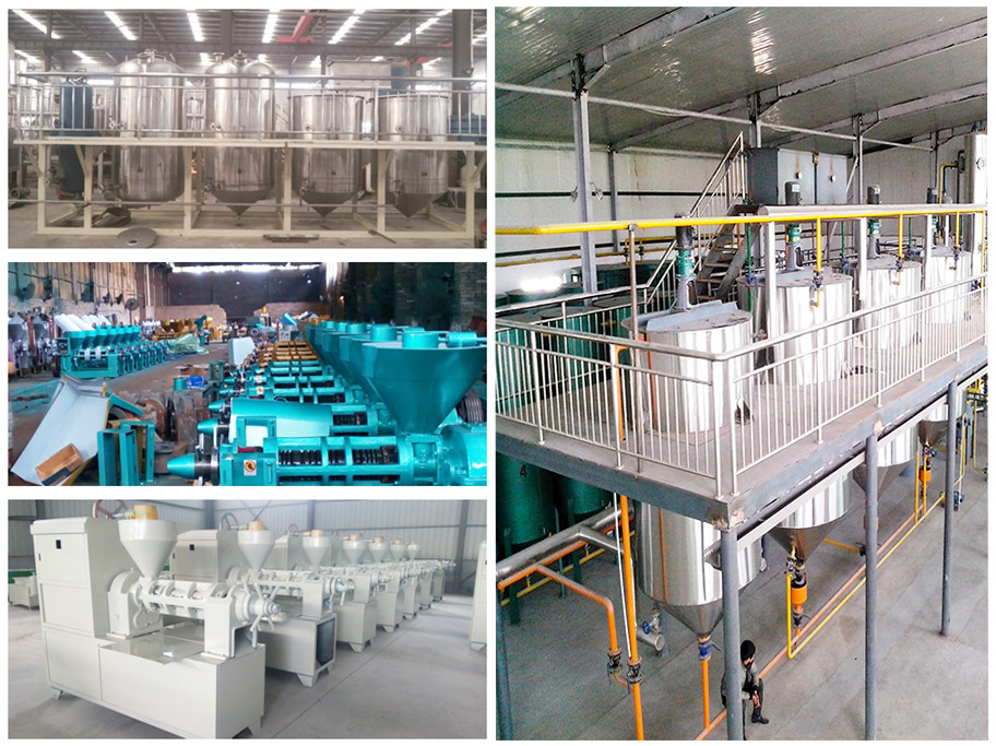 Chinese famous brand crude rice bran oil refinery plants with stainless steel