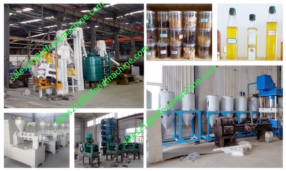 100TPD Crude Palm Kernel Oil Production Line/Palm Kernel <a href=