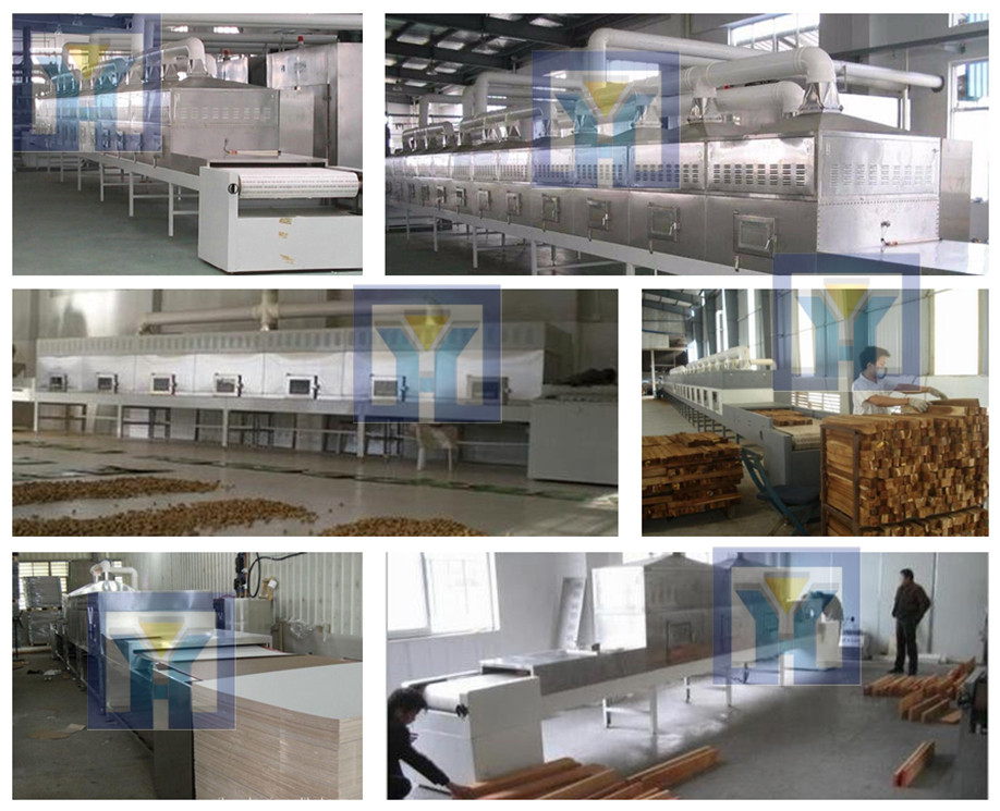 Tunnel type industrial microwave dryer