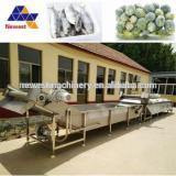 Professional thawing equipment/pork defrozen machine/frozen seafood unfreeze machine