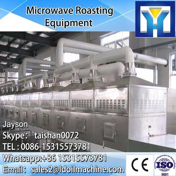 Jinan Adasen conveyor microwave dryer machine for fish #5 image
