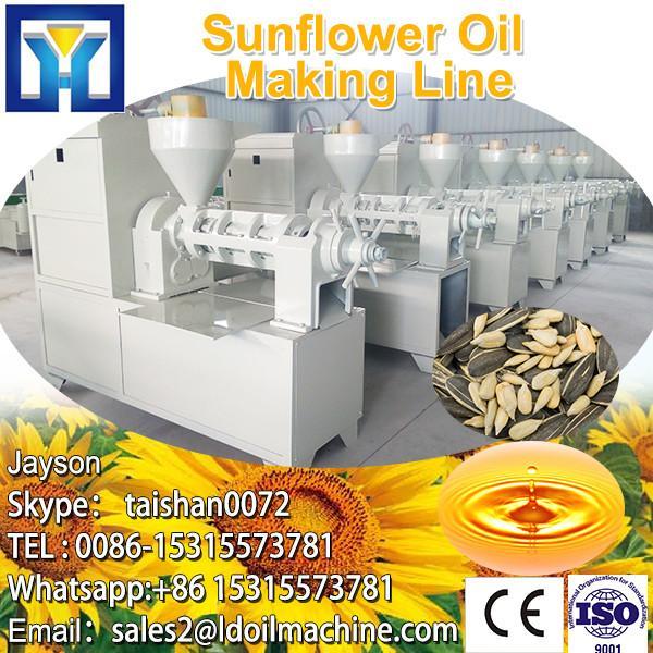 6YY-260 cold pressed oil machine, sesame oil extraction machine, ethiopian sesame seed oil pressing machine #3 image