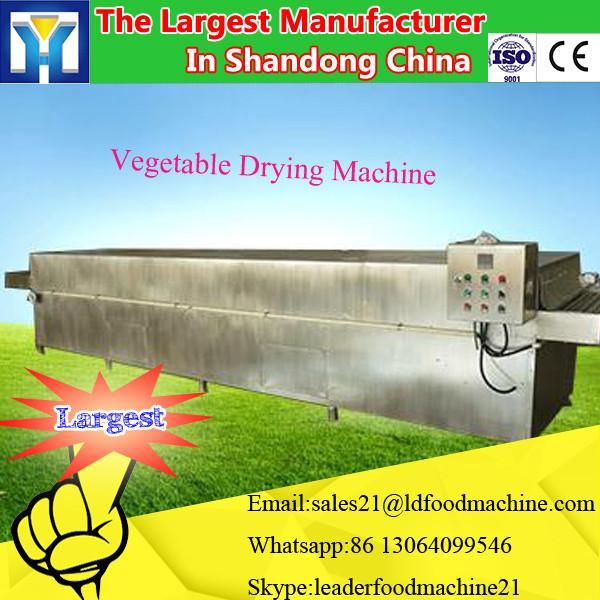 Large-scale Vacuum Freeze Dryer for fruit / lyophilizer price #2 image