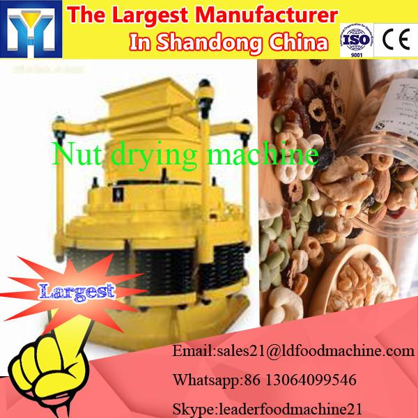 Fruit lyophilizer mini freeze dryer in Fruit & Vegetable Processing Machine #1 image