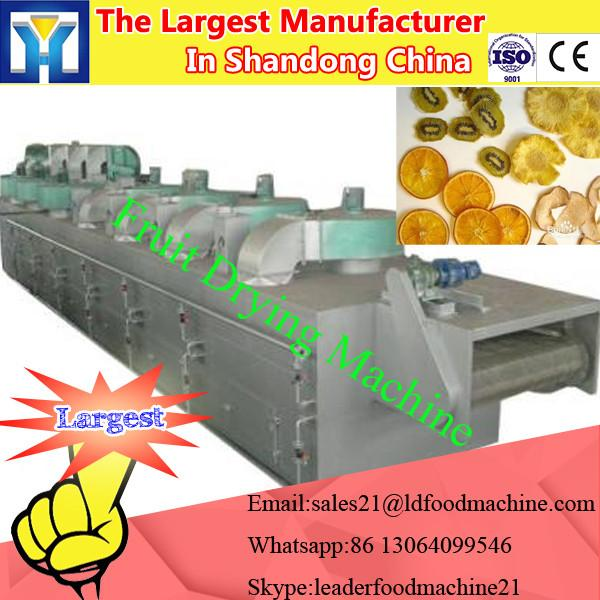 China supplier fruit drying machine for dehydrating fruits #2 image