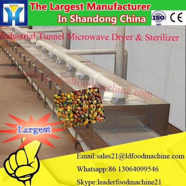 Industrial Conveyor Belt Type Microwave Oven #3 image