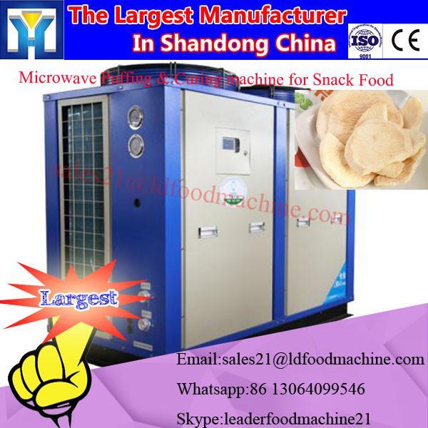 Industrial microwave vacuum dates dryers /vacuum microwave palm date drying machine #1 image