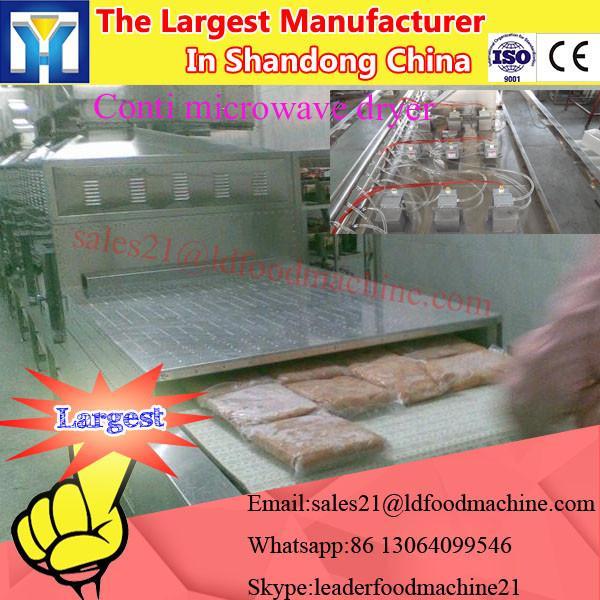 Industrial Mesh Belt Fig Sterilization Drying Microwave Oven #1 image