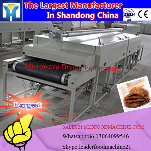 Microwave Low temperature curing microwave equipment Drying Equipment #1 image