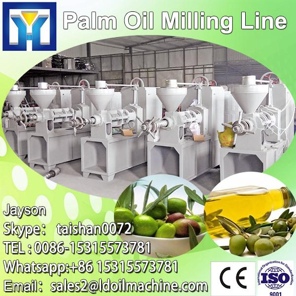 1-10TPH palm fruit bunch oil pressing machine #1 image