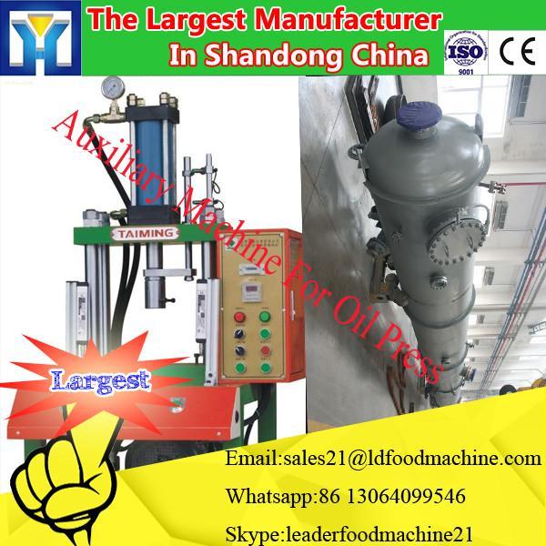 LD famous brand easy operation 6YY-230 mini grape seed oil press machine 35-55kg/h #1 image