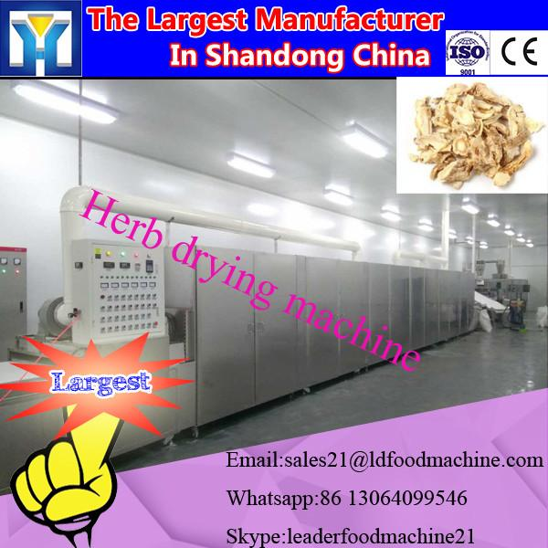 Continuous tunnel belt microwave dryer and sterilizing machine #1 image