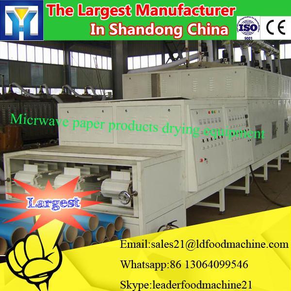 Tunnel type industrial microwave Alpinia katsumadai dryer machine #1 image