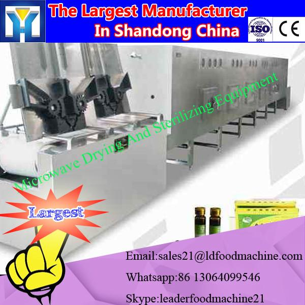 Tunnel type industrial microwave Nephrolepis dryer machine #2 image