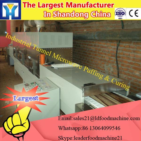 Large-scale Vacuum Freeze Dryer for fruit / lyophilizer price #3 image