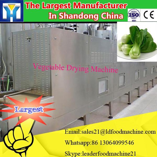 LD Industrial Food Dehydrator/ Fish drying machine #3 image