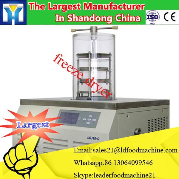 Large-scale Vacuum Freeze Dryer for fruit / lyophilizer price #1 image