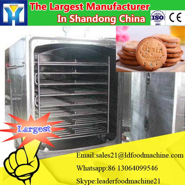 Industrial Electric drying equipment for fruits,vegetable dehydrator #3 image