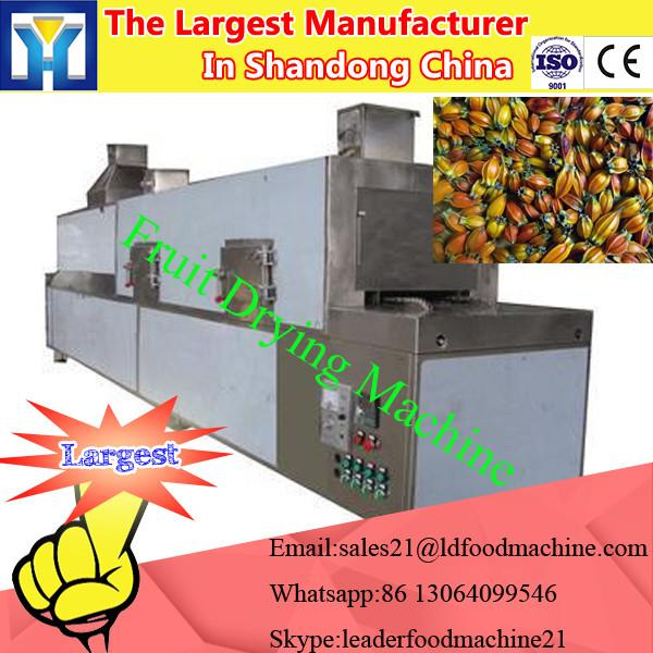 red dates dehydrator,lemon/mango fruits drying machines #2 image