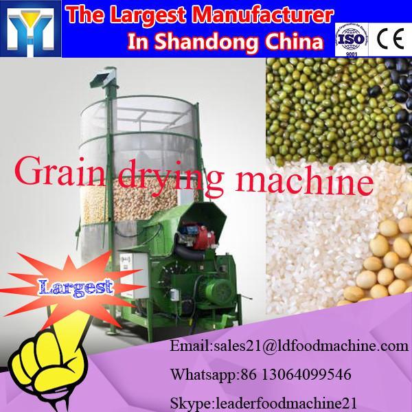 Industrial Tea Leaves/moringa leaf / herbs/flowers microwave drying Machine #2 image