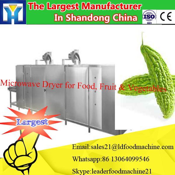 Stainless steel hot air Industrial food dryer,mushroom dryer cabinet #3 image
