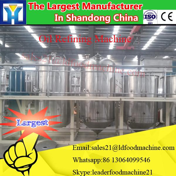 3 Ton per Day extruder plant for corn and soybean oil refinery machine #1 image