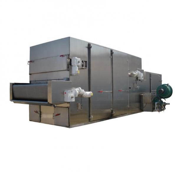 Potato Chips/Kelp Silk Mesh Belt Hot Air Dryer #2 image