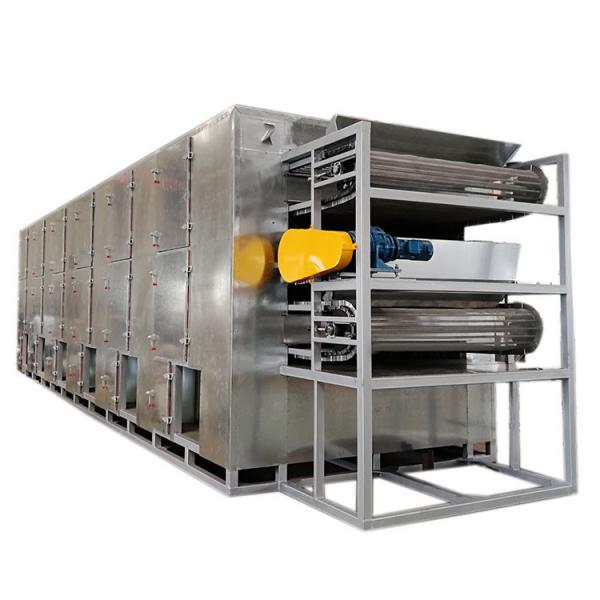 200kg Industrial Walnut Drying Machine Automatic Electric Continuous Dryer Grain Dryer Machine #1 image