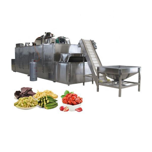 Factory Hot Sale Juice Hand Machine 100% Fresh Fruit Juice Production Line Machine #3 image
