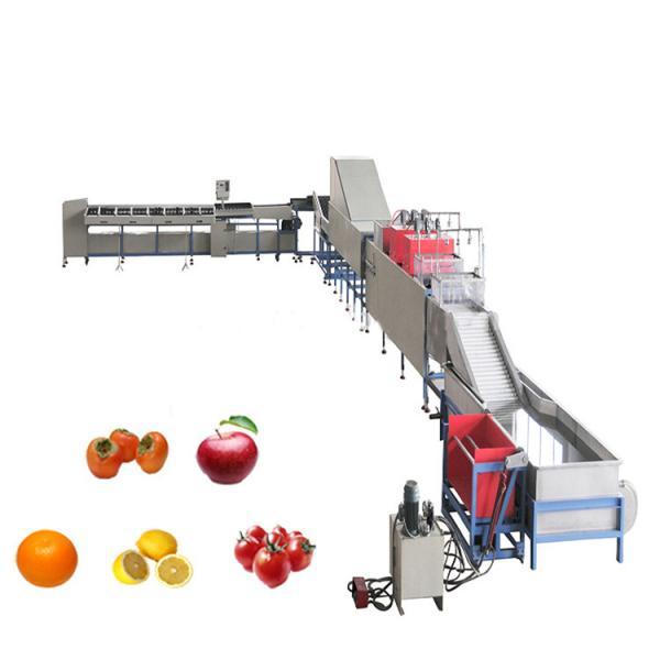 Factory Hot Sale Juice Hand Machine 100% Fresh Fruit Juice Production Line Machine #2 image