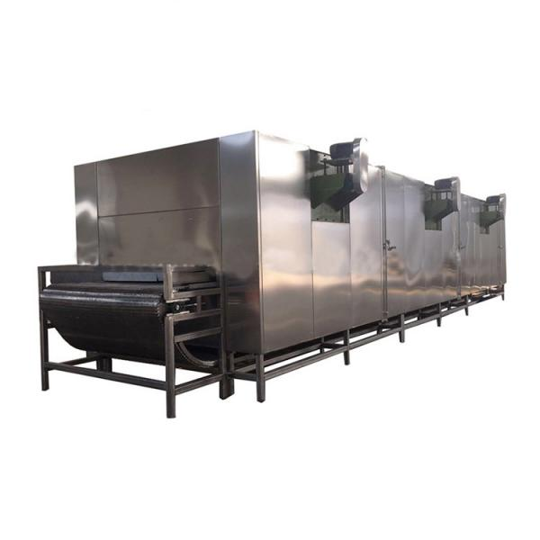 Root Vegetable Peeling Cutting Fruit Cleaning Equipment Conveyor Belt Vegetable Processing Machinery Production Line #1 image