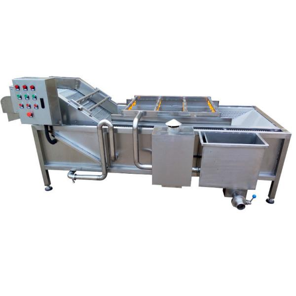Root Vegetable Peeling Cutting Fruit Cleaning Equipment Conveyor Belt Vegetable Processing Machinery Production Line #3 image