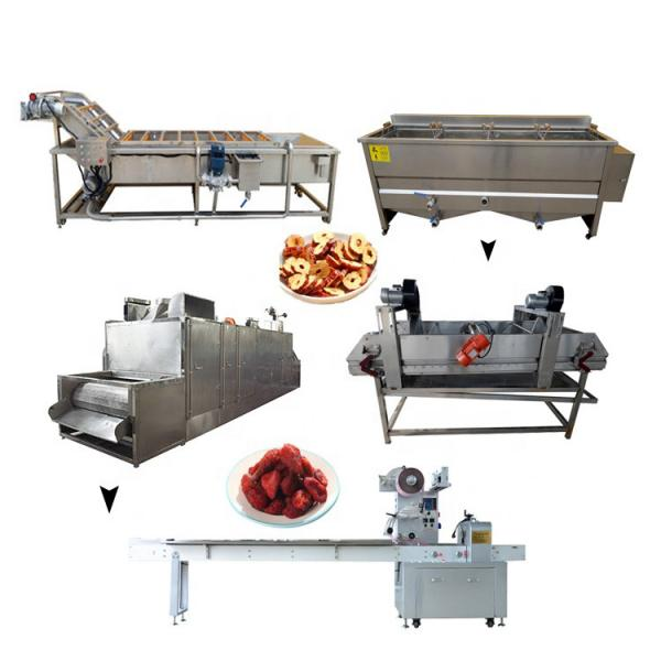 Root Vegetable Peeling Cutting Fruit Cleaning Equipment Conveyor Belt Vegetable Processing Machinery Production Line #2 image